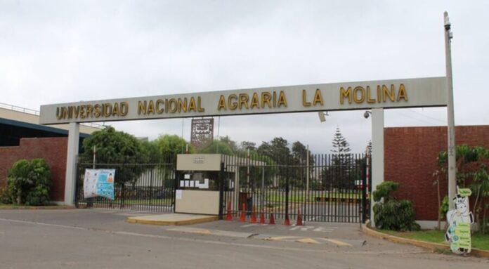 Salió el ranking de las mejores universidades del mundo donde 7 son de Perú